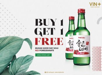 Buy 1 Get 1 Soju at VIN +